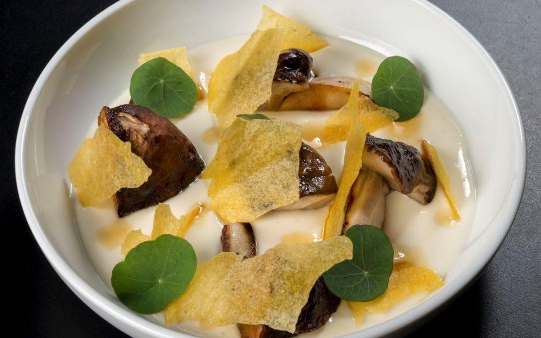Polenta, funghi porcini, Parmigiano Reggiano e miele di castagno