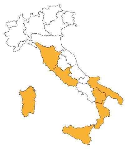 Miele Eucalipto in Italia