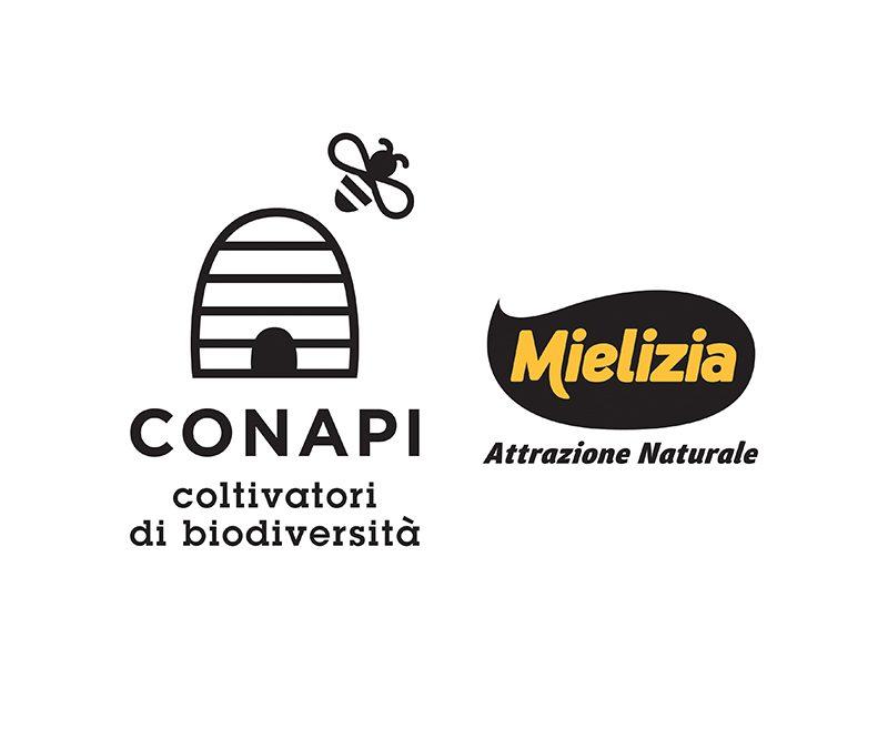 Conapi – Mielizia: siglato closing per la cessione della partecipazione in Alce Nero S.p.A.