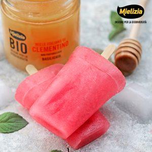 mielizia ricetta - ghiaccioli al lampone e miele di clementino